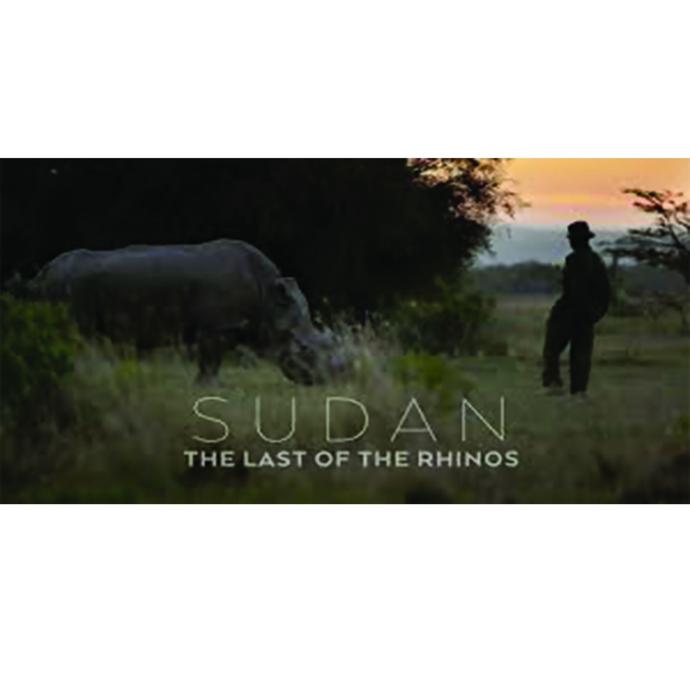 Sudan: Last Of The Rhinos